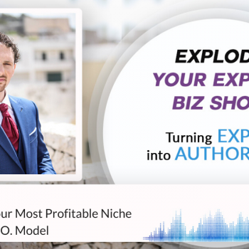 Episode #267 How To Find Your Most Profitable Niche With The H.E.R.O. Model